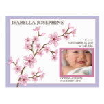Cherry Blossom Baby Girl Birth Announcement: lilac Postcard