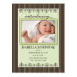Classy Pinstripe Lime Baby Announcement Postcard