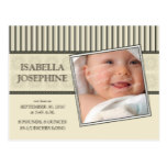 Damask & Stripes Sepia Baby Birth Announcement Postcard