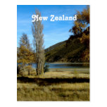 New Zealand Countryside Postcard