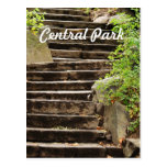 NYC Central Park Postcard