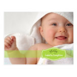 Simply Elegant (lime) Baby Birth Announcement Postcard