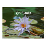 Sri Lanka Water Lily Postcard