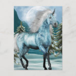 Unicorn in Moonlight Postcard